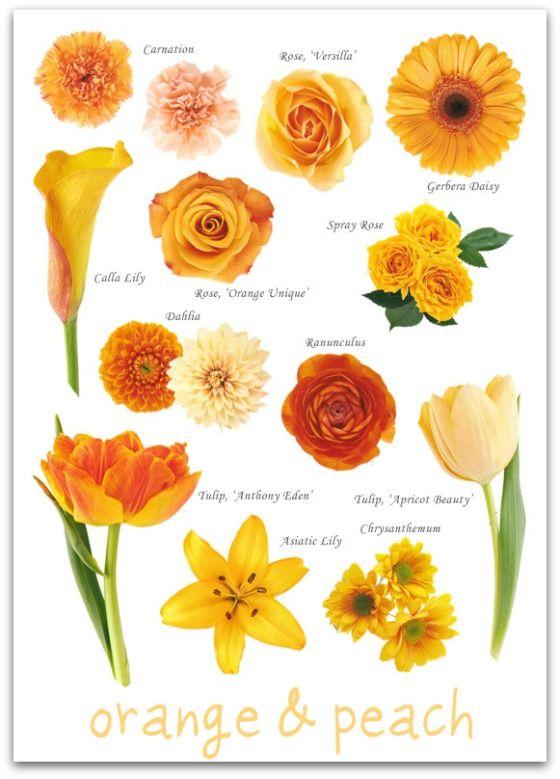 Des moines orange flowers des moines orange flowers for sale orange flowers in des moines mightylinksfo